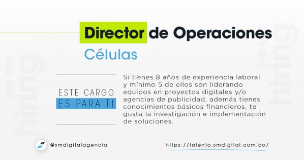 Director operaciones células