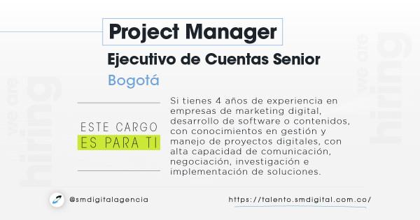 Project manager/ejecutivo de cuentas senior